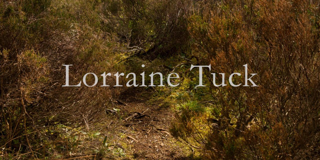 Portfolio website Design for Lorraine Tuck